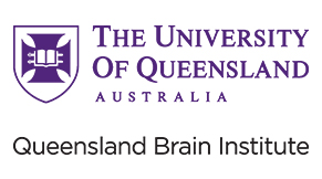 Pioneering Co-Creation Transforms Brain Research at QBI