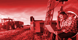 Driving Digital Transformation In the Livestock Industry